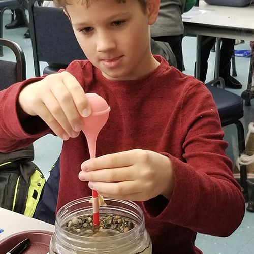 Science experiment in grade 4